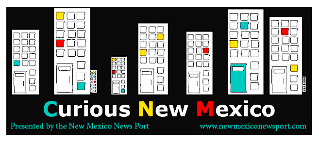 Curious NM Logo